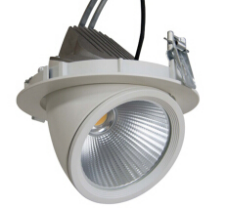 led COB downlight 50W